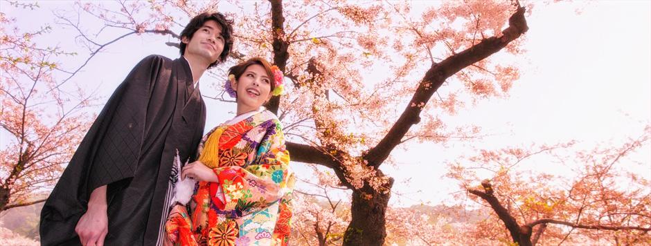 Yokohama Sankeien Garden<br /> ~横浜 三渓園 桜